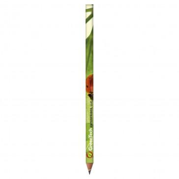 Bleistift BIC Ecolutions Evolution Digital (ab 500 Stk.)