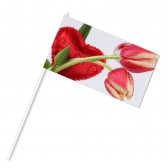 Papierfähnchen bedrucken Digital Kleinauflage Format S, DIN Lang (ab 100 Stück)