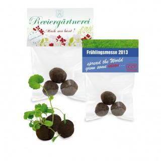 Mini Pflanzkügelchen als Werbeartikel: Verteilen Sie Freude mit den Wonder Balls