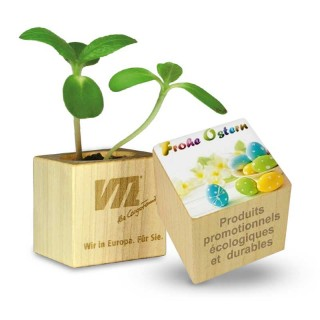 Oster Pflanz Holz als Öko Werbeartikel gravieren.